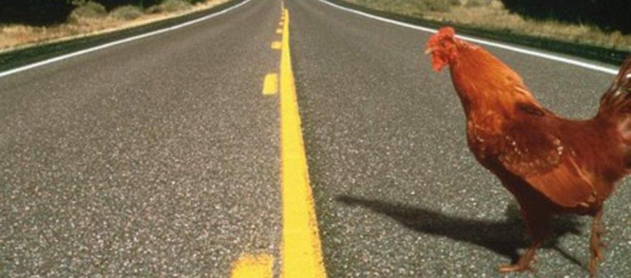 Chicken…Road…Crossing