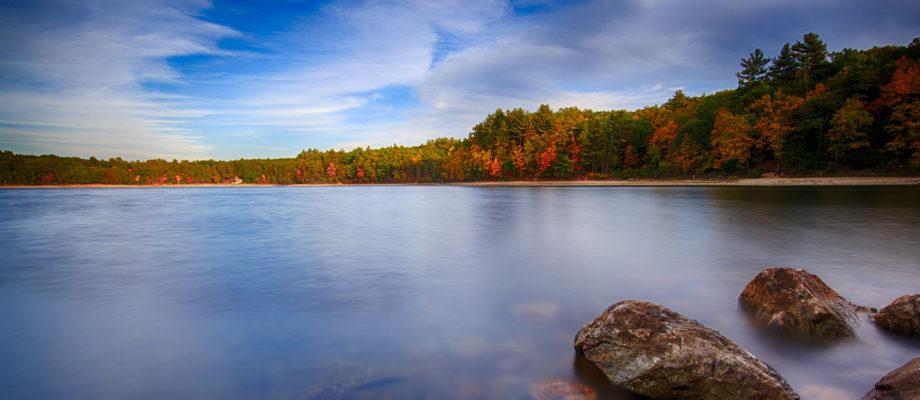 Upon A Pond